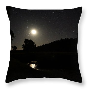 Throw Pillow featuring the photograph Moon Set Over Palm Valley 2 by Paul Svensen