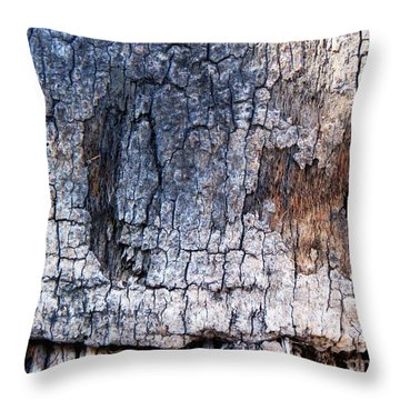 Throw Pillow featuring the photograph Moon by Vanessa Palomino