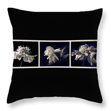 Moonglow Triptych Throw Pillow