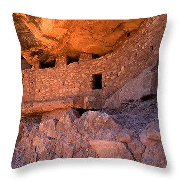 Moonhouse Closeup Throw Pillow