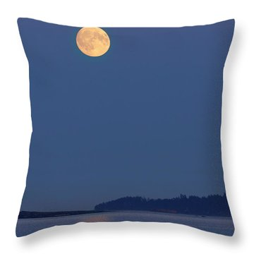 Moonlight - 365-224 Throw Pillow by Inge Riis McDonald