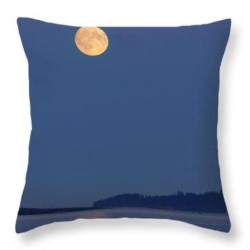 Moonlight - 365-224 Throw Pillow