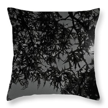 Throw Pillow featuring the photograph Moonlight by Betty Northcutt