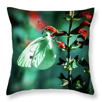 Moonlight Butterfly Throw Pillow