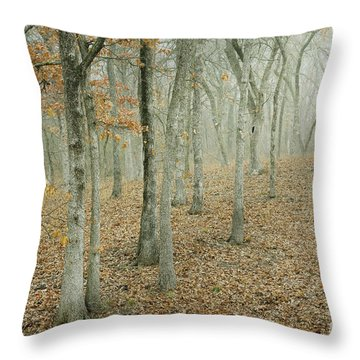 Moonlight In The Forest Throw Pillow by Iris Greenwell