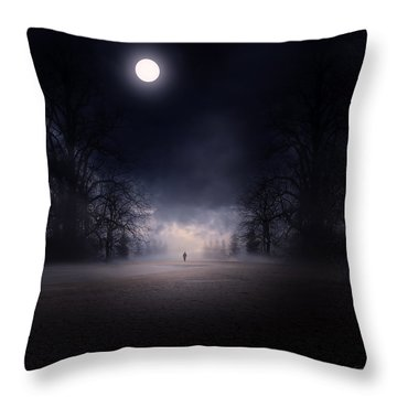 Moonlight Journey Throw Pillow