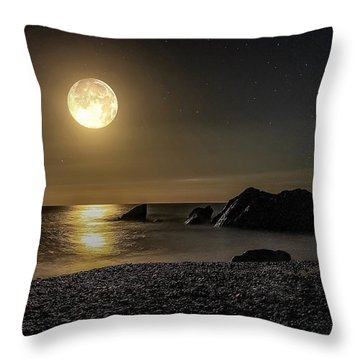 Moonlight Reflection  Throw Pillow