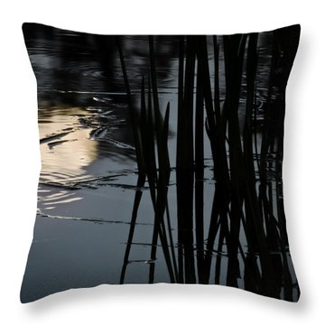 Moonlight Reflections Throw Pillow