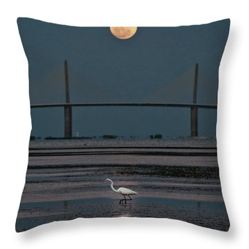 Moonlight Stroll Throw Pillow by Steven Sparks