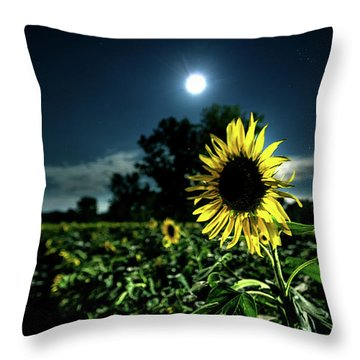 Throw Pillow featuring the photograph Moonlighting Sunflower by Everet Regal