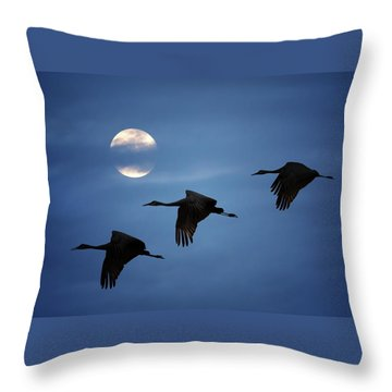 Moonlit Flight Throw Pillow