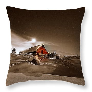 Moonlit  Throw Pillow by Matt Helm