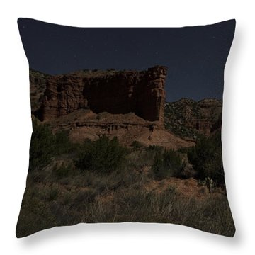 Throw Pillow featuring the photograph Moonlit Path by Melany Sarafis