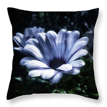 Throw Pillow featuring the photograph Moonlit Petals. From The Beautiful by Mr Photojimsf