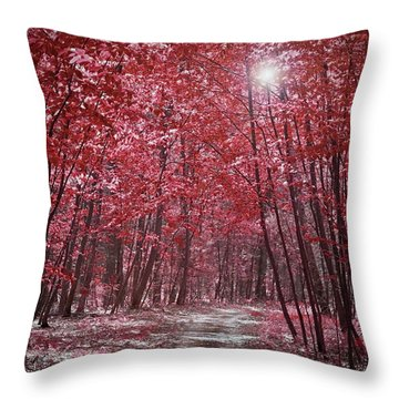 Moonlit Road Through Red Forest  Throw Pillow