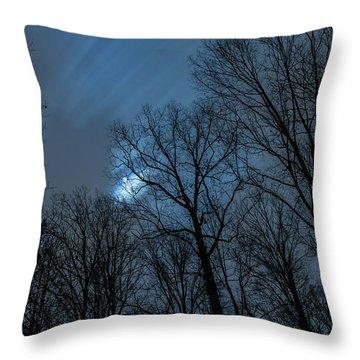 Moonlit Sky Throw Pillow