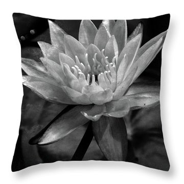 Moonlit Water Lily Bw Throw Pillow