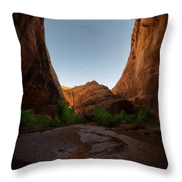 Throw Pillow featuring the photograph Moonrise At Coyote Gulch by Dustin LeFevre