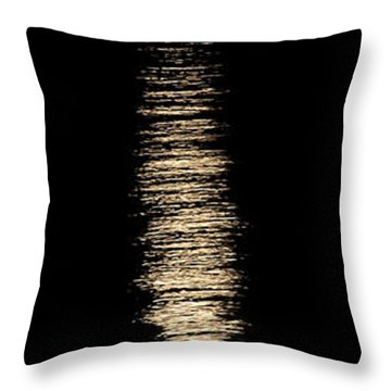 Moonrise Over Monroe Harbor Chicago 0158 Throw Pillow