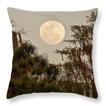 Moonrise Over Southern Pines Throw Pillow