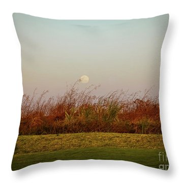 Moonscape Evening Shades Throw Pillow