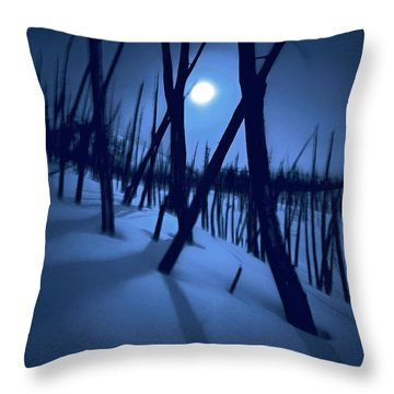 Moonshadows Throw Pillow