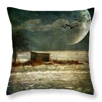 Moonstruck Throw Pillow by Lois Bryan