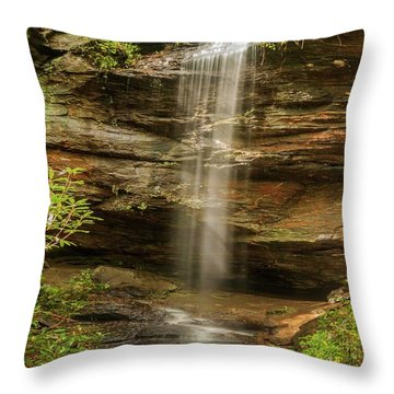 Moore Cove Falls Throw Pillow