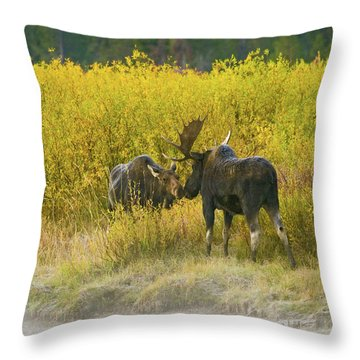Moose Couple Throw Pillow