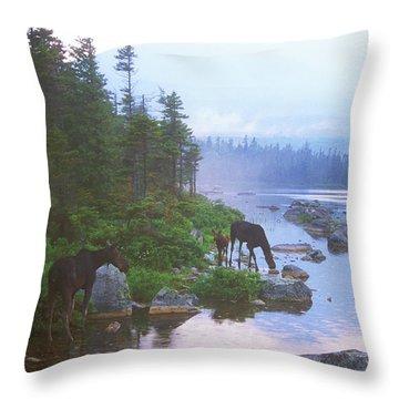 Moose In Evening Rain Throw Pillow