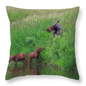Moose Play Throw Pillow