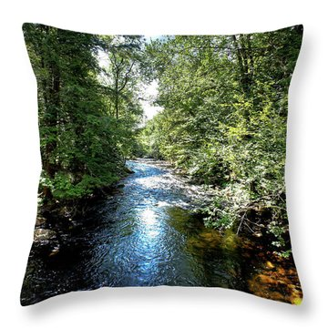 Throw Pillow featuring the photograph Moose River At Covewood by David Patterson