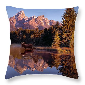 Moose Tetons Throw Pillow