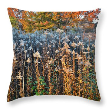 Throw Pillow featuring the photograph Moraine Hills Fall Colors by Ray Mathis