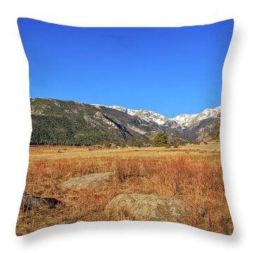 Moraine Park In Rocky Mountain National Park Throw Pillow by Peter Ciro