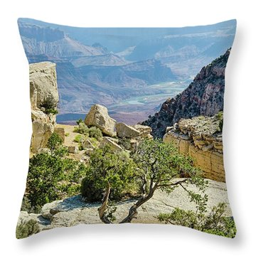 Moran Point View Throw Pillow