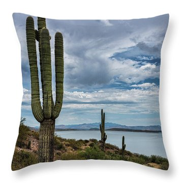 Throw Pillow featuring the photograph More Beauty Of The Southwest  by Saija Lehtonen