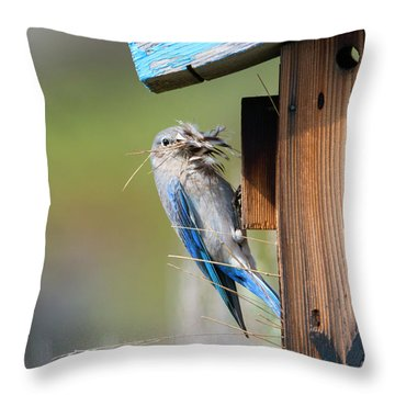 Throw Pillow featuring the photograph More Than Mouthful by Mike Dawson