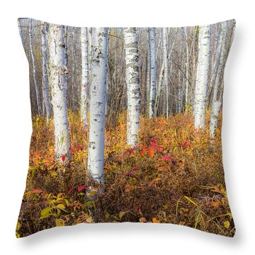 More To The Under-story Throw Pillow