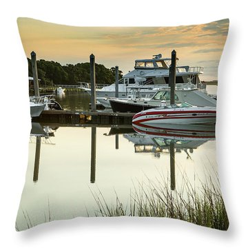 Morgan Creek Throw Pillow
