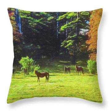 Morgan Horses In Autumn Pasture Throw Pillow