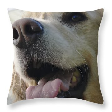 Morgie Throw Pillow