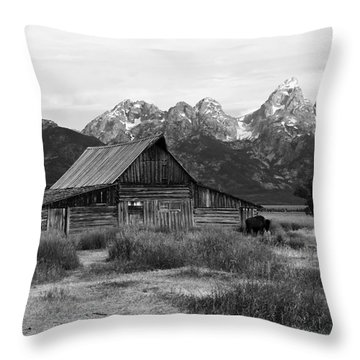 Mormon Row Famous Barn Throw Pillow by Teresa Zieba