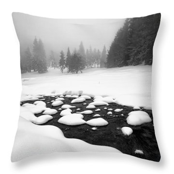 Morn In White Throw Pillow by Evgeni Dinev