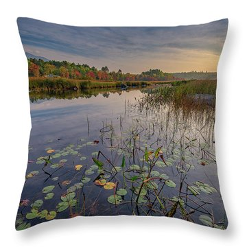 Morning At Compass Pond Throw Pillow