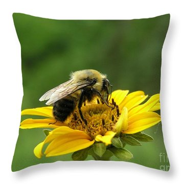 Morning Bee Throw Pillow by Susan  Dimitrakopoulos