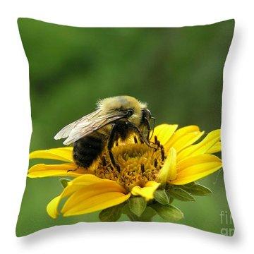 Morning Bee Throw Pillow