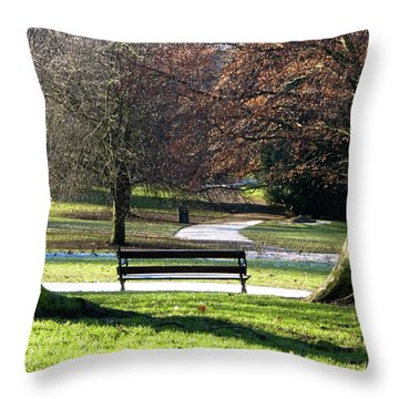 Morning Bliss Throw Pillow by Brian Roscorla