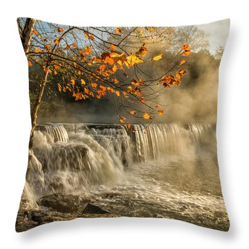 Morning Bliss Throw Pillow by James Barber