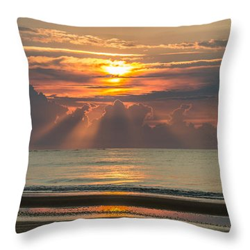 Morning Break Throw Pillow